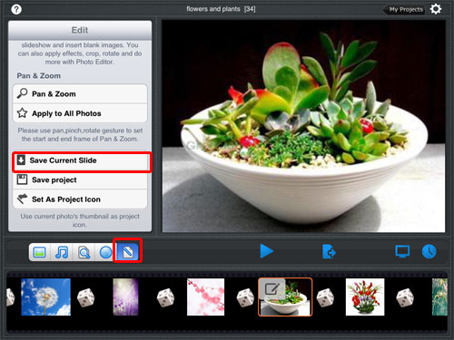 save photos from picasa to ipad